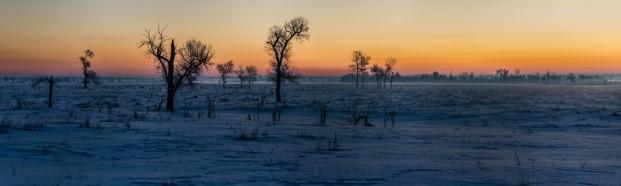 cropped-sunrise-field1.jpg