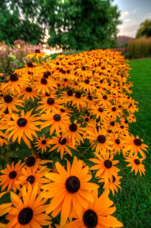 Green-Bay-Botanical-Gardens-4