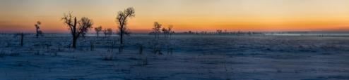 Sunrise-Field