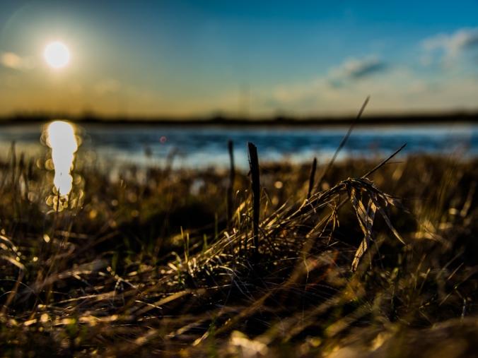 The Sun's Reflection